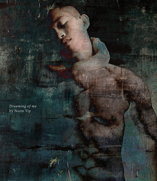 Dreaming of me, 2015, mixed media, by Norm Yip